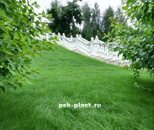 Белые балясины в ландшафтном дизайне